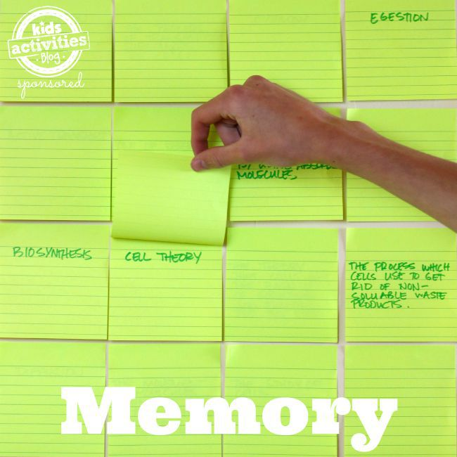 Memory - Active Learning Techniques