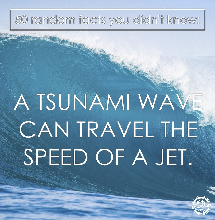 a tsnuami wave makes a great science fact of the day