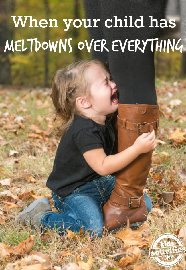child has meltdowns over everything