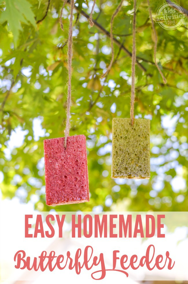 easy homemade butterfly feeder with butterfly food recipe - sponges soaked in butterfly food hanging from tree limbs