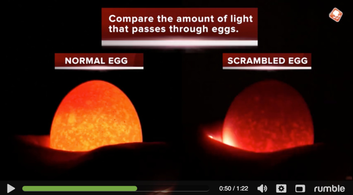 How to tell if the egg is scrambled with a light from video