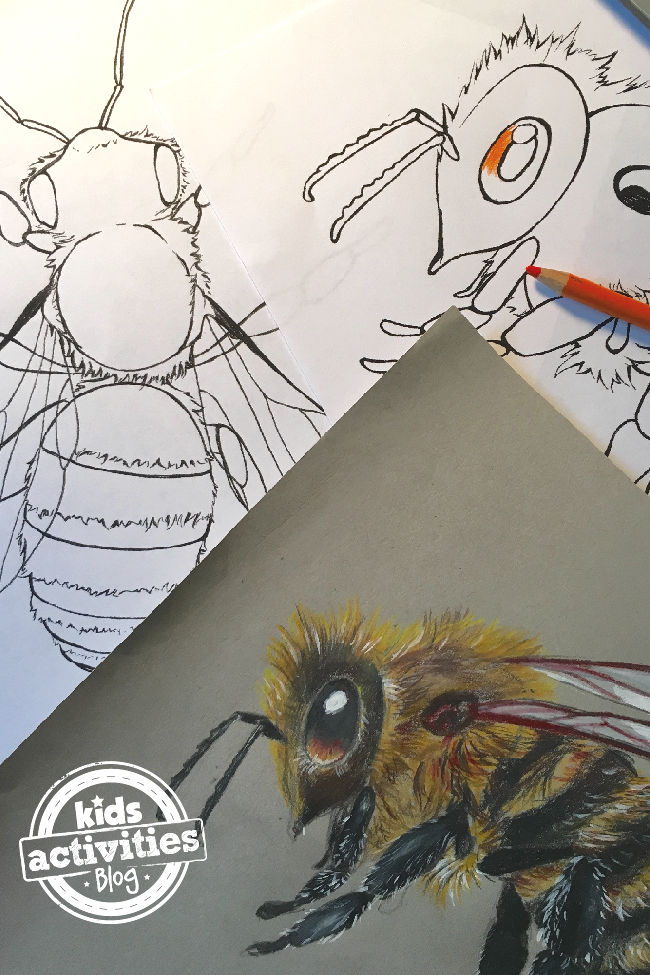 Detailed Honey Bee Coloring Pages for Kids
