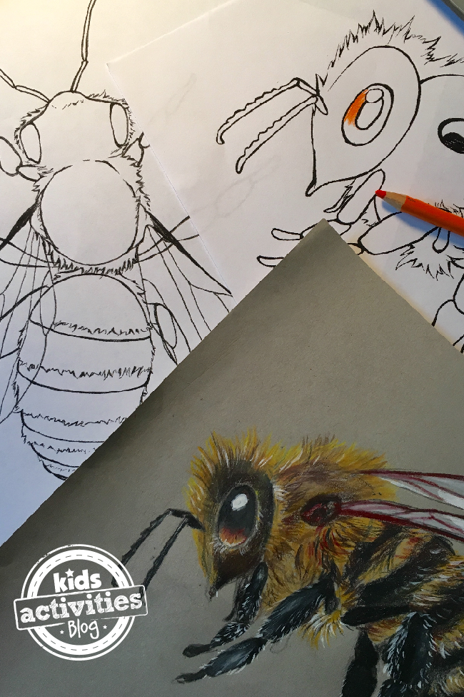 bee coloring pages - two bee images and finished color bee