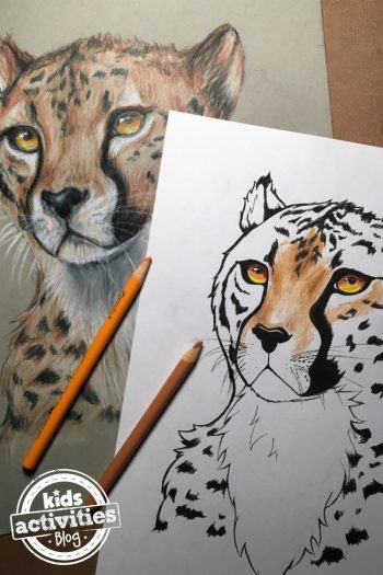 Cheetah coloring pages for adults and kids from Kids Activities Blog with video tutorial - coloring pages