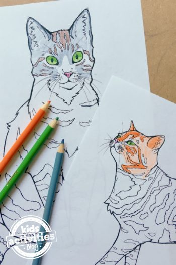 cool drawings - cat coloring page designed by Natalie for Kids Activities Blog