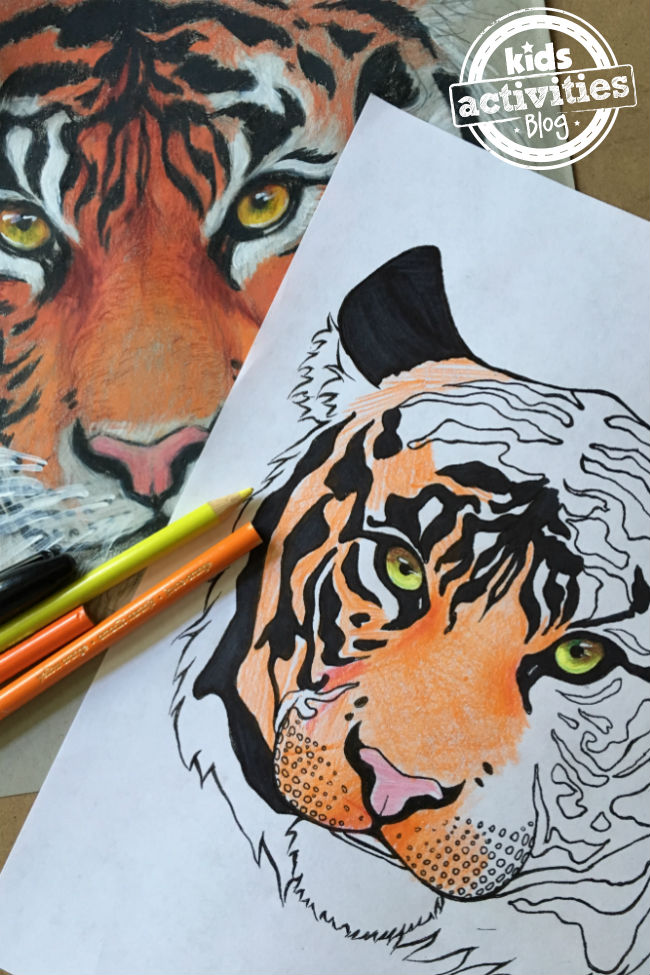 Tiger Coloring Pages for Kids & Adults