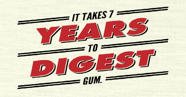 it takes 7 years to digest gum