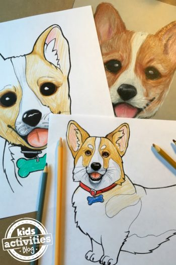 Corgi dog coloring page designed by Natalie