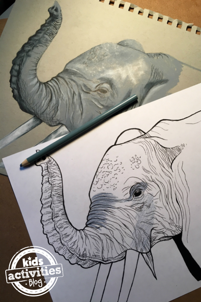 elephant_featured