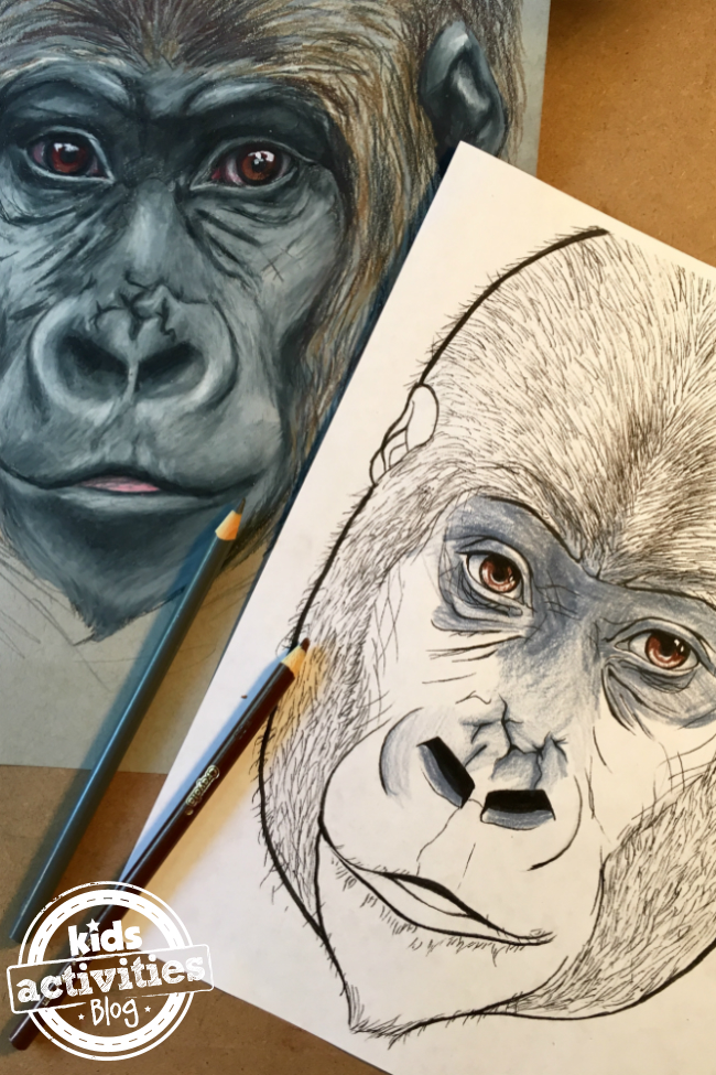 Awesome Gorilla Coloring Page with Video Tutorial