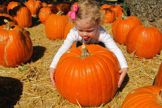 Halloween Events for Kids (that aren't so scary)