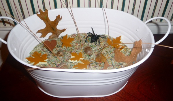 Fall Themed Sensory Tub for Toddlers