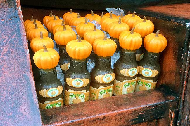Harry Potter's Pumpkin Juice - the Healthy Halloween Treat