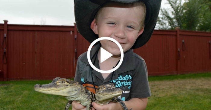 baby-alligator-wrangler-2