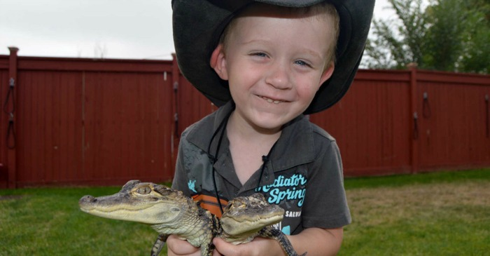 This 2-Year-Old Gator Wrangler Is More Fearless Than You And I!