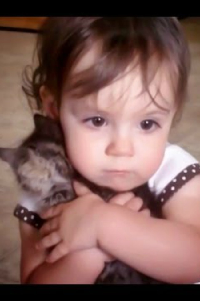 """Little Girl Clutches Kitten To Chest, """"Is That Your Baby?"""""""
