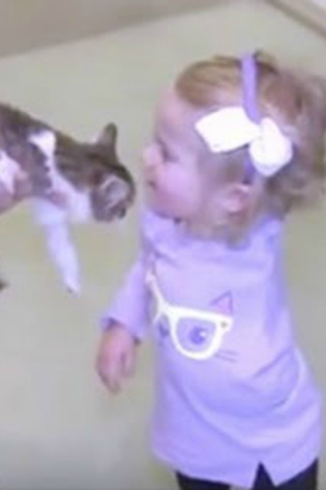 Two-Year-Old Amputee Receives A Kitten Who Is Just As Unique As Her