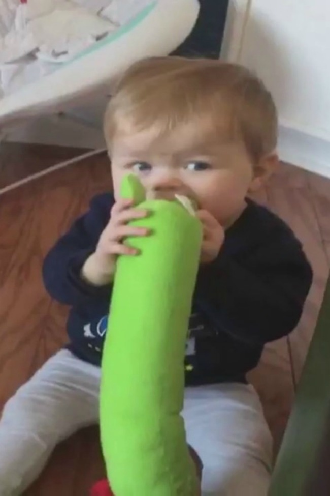 Baby Has Hilarious Reaction To Finding Out He's Chewing On Dog's Toy