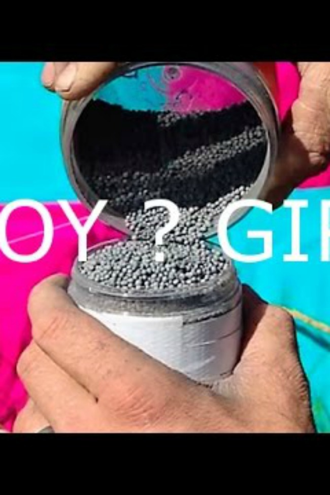 Probably The Coolest Gender Reveal Ever!