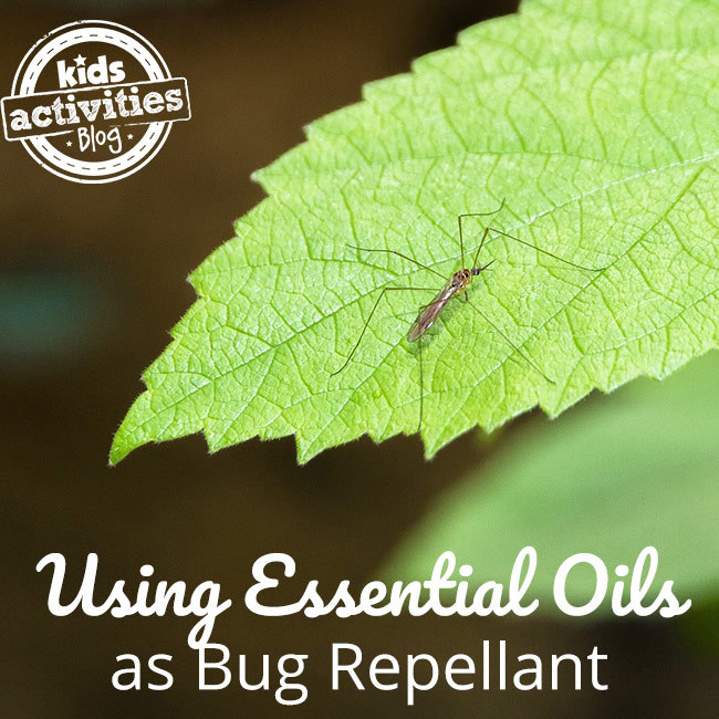 Essential Oils to Keep Outdoor Bugs Away