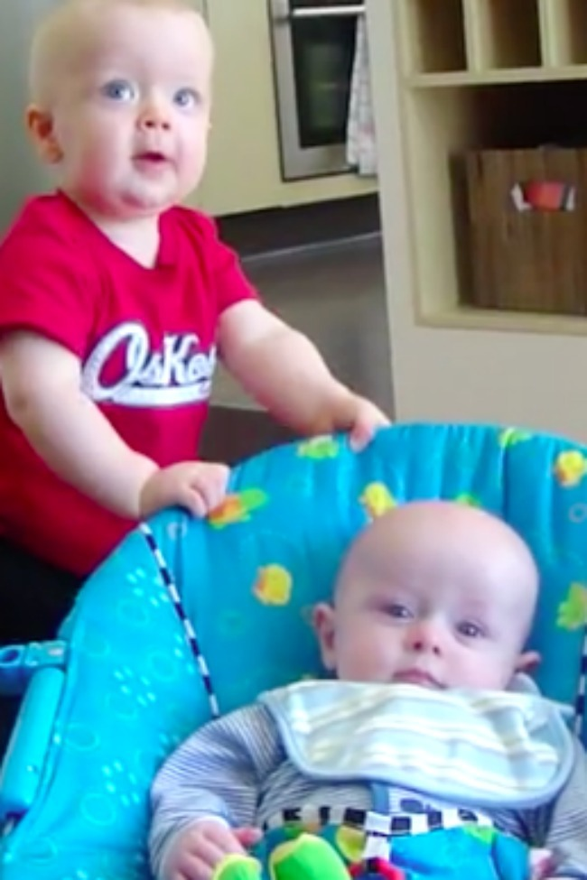 Toddler Doesn't Quite Know What To Do When He Accidentally Scares Younger Cousin