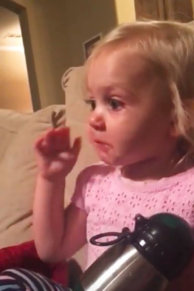 2-Year-Old Little Girl Feels All The Feels Watching The Good Dinosaur! [Video]