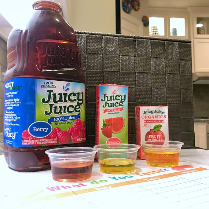 Simple Taste Science Experiment for Kids
