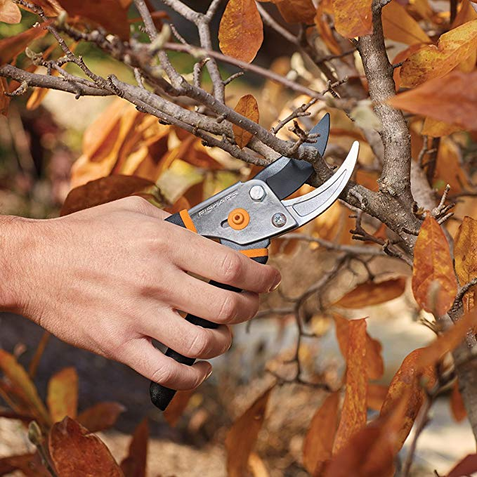 Amazon is Selling $9 Pruning Shears That 'Cuts Like a Hot Knife Through Butter'