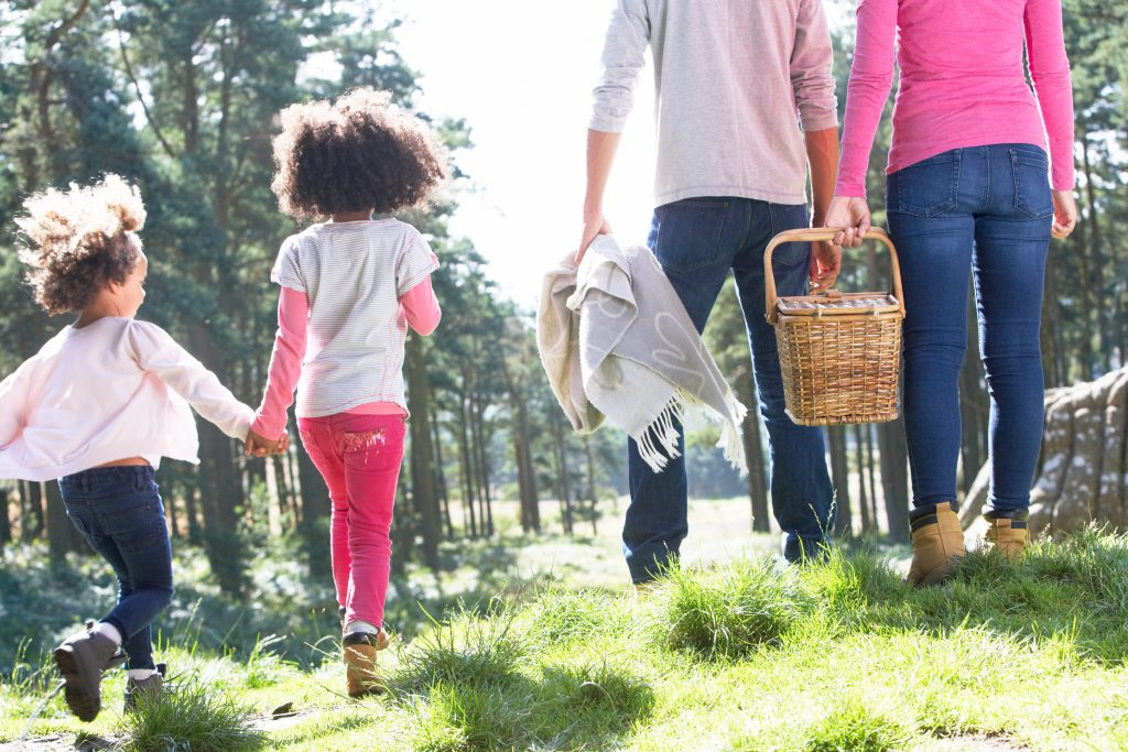 Lets go on a picnic together as a family - picnic ideas - Kids Activities Blog - family going on a picnic