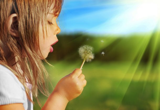 free toddler stuff to do outside like blow a dandelion
