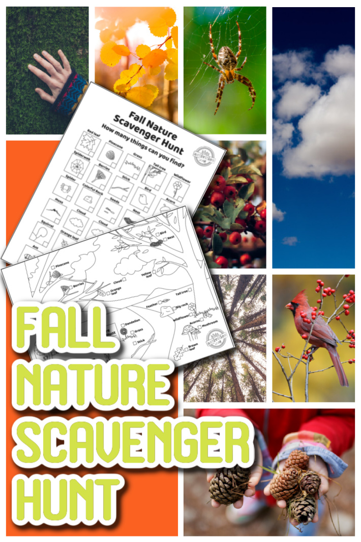 Let's Go on a Fall Nature Scavenger Hunt for Kids with Free Printable