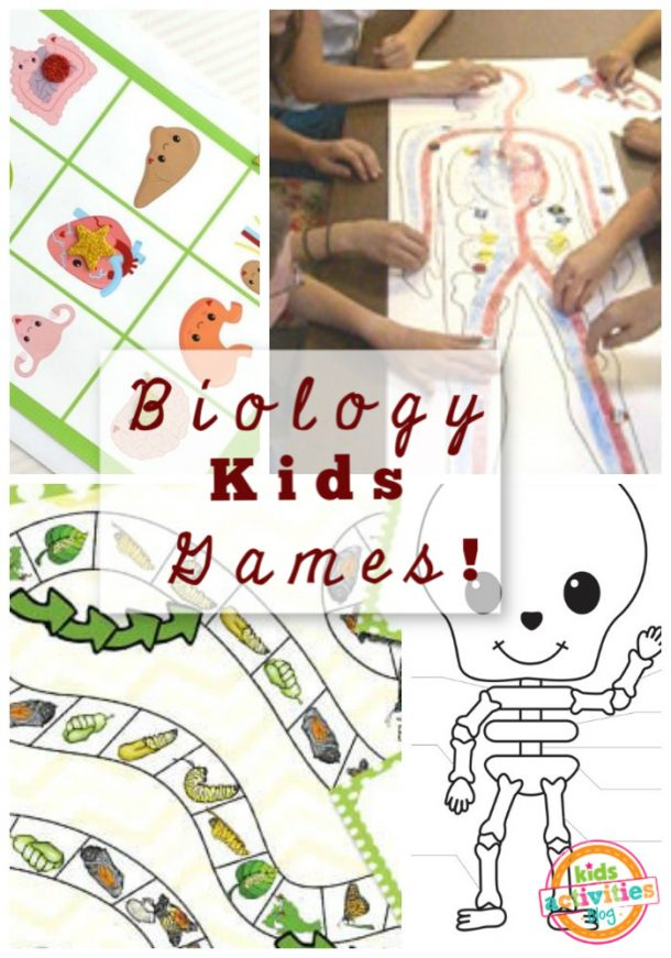 biology games for kids
