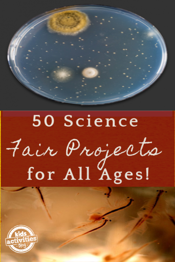 50 Science Fair Projects for all ages