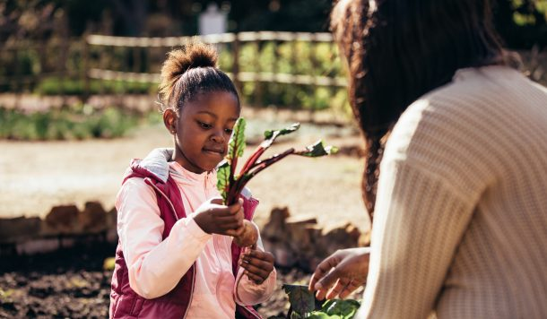A child's garden being built with fresh plants by a girl in a pink and red jacket.