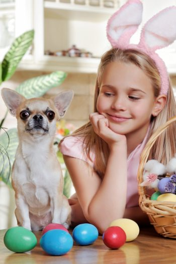 Indoor Easter Egg Hunt Ideas for Kids and maybe dogs - Kids Activities Blog