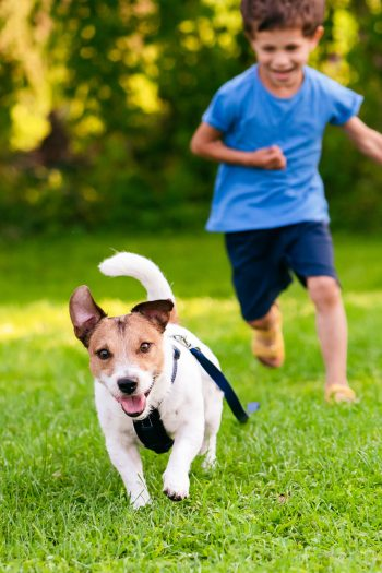 Kids who spend time outside are happier adults - Kids Activities Blog - child chasing dog in backyard