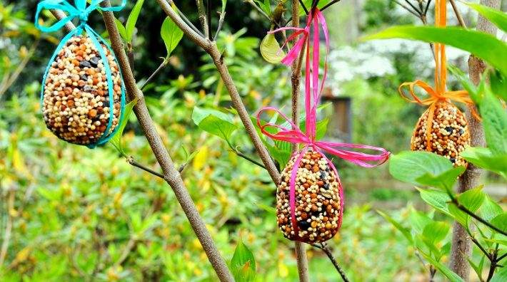 Plastic egg mold birdseed feeders hanging in tree from Redeem Your Ground - eggs hanging in the trees ready for birds