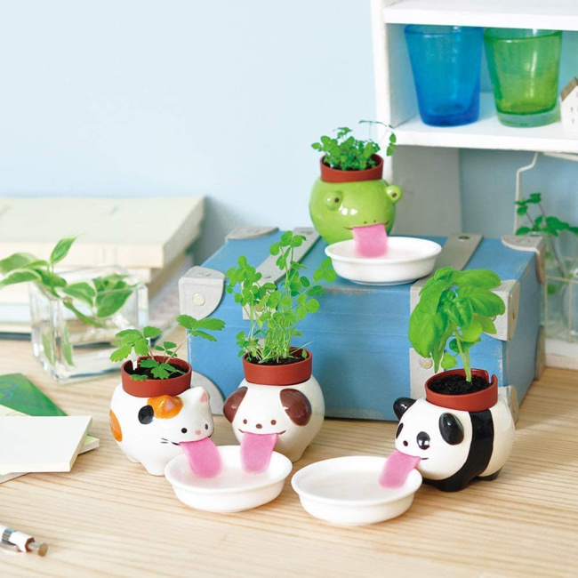 self watering animals with pink tongues - four shown with plants and lapping up water