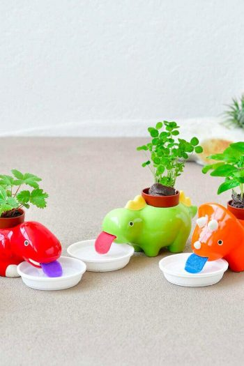 self watering dinosaur planters