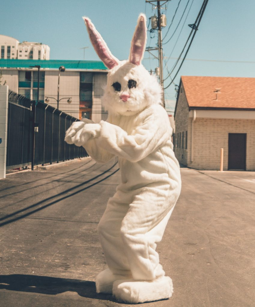 Track the Easter Bunny this holiday with the Easter Bunny Tracker - Easter bunny on a road near a beach
