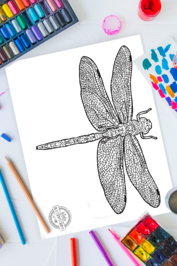 intricate dragonfly zentangle pattern art ready to be colored with mixed art supplies and bright colors