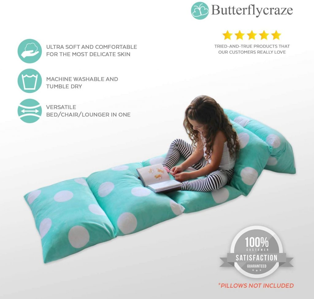 Butterfly Craze Pillow covers