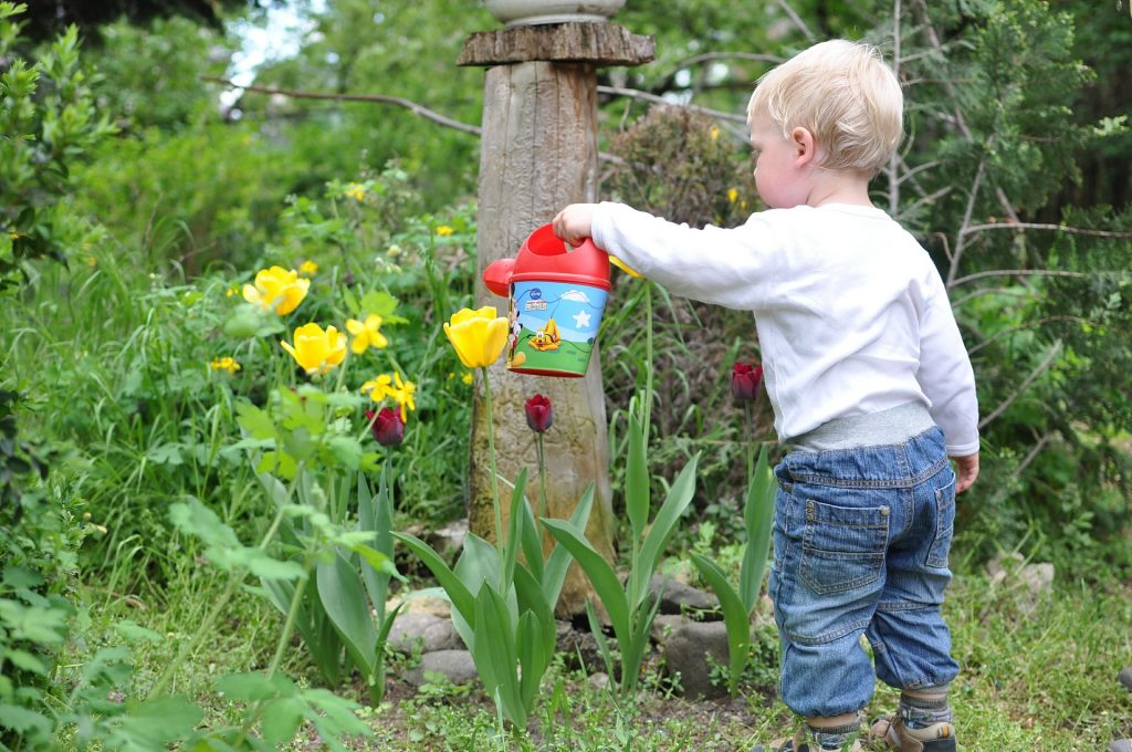 Toddler with watering can working on the garden
