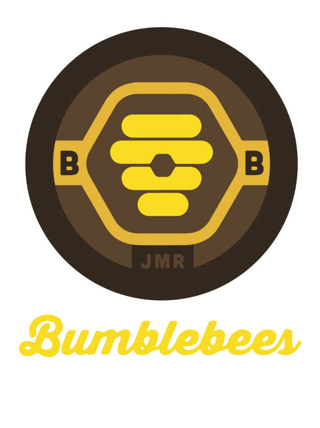 Bumblebees Marble League 2020