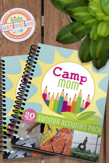 Camp Mom ebook on picnic table background