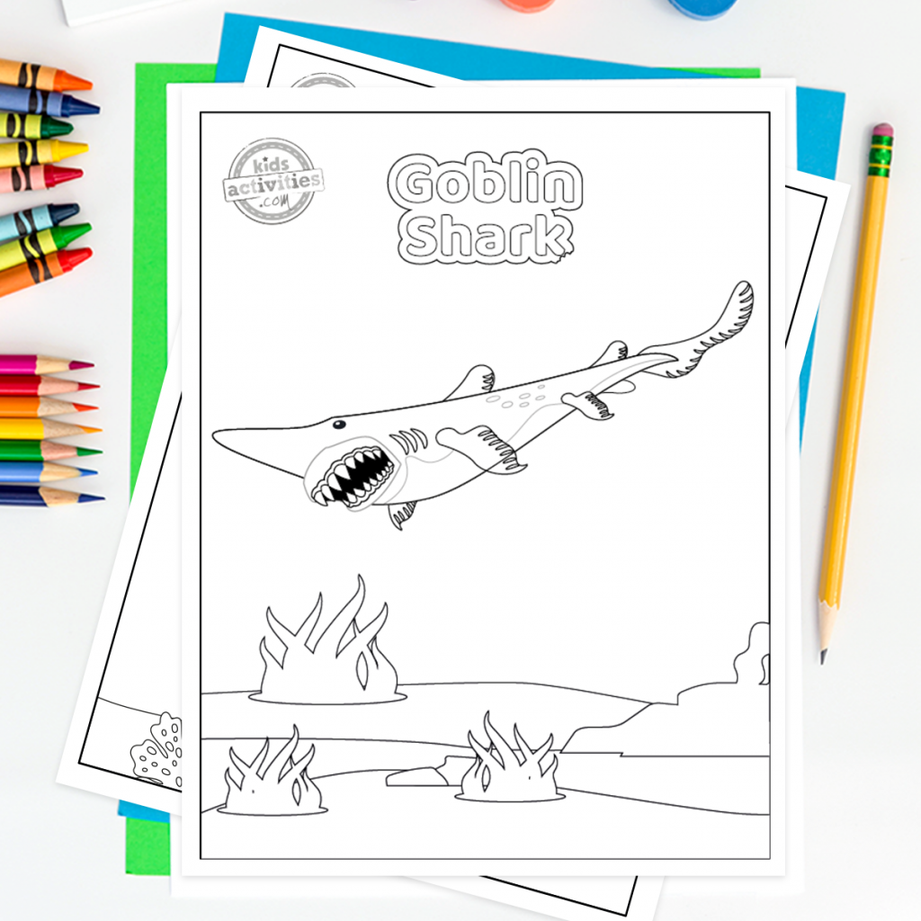 great white sharks coloring pages