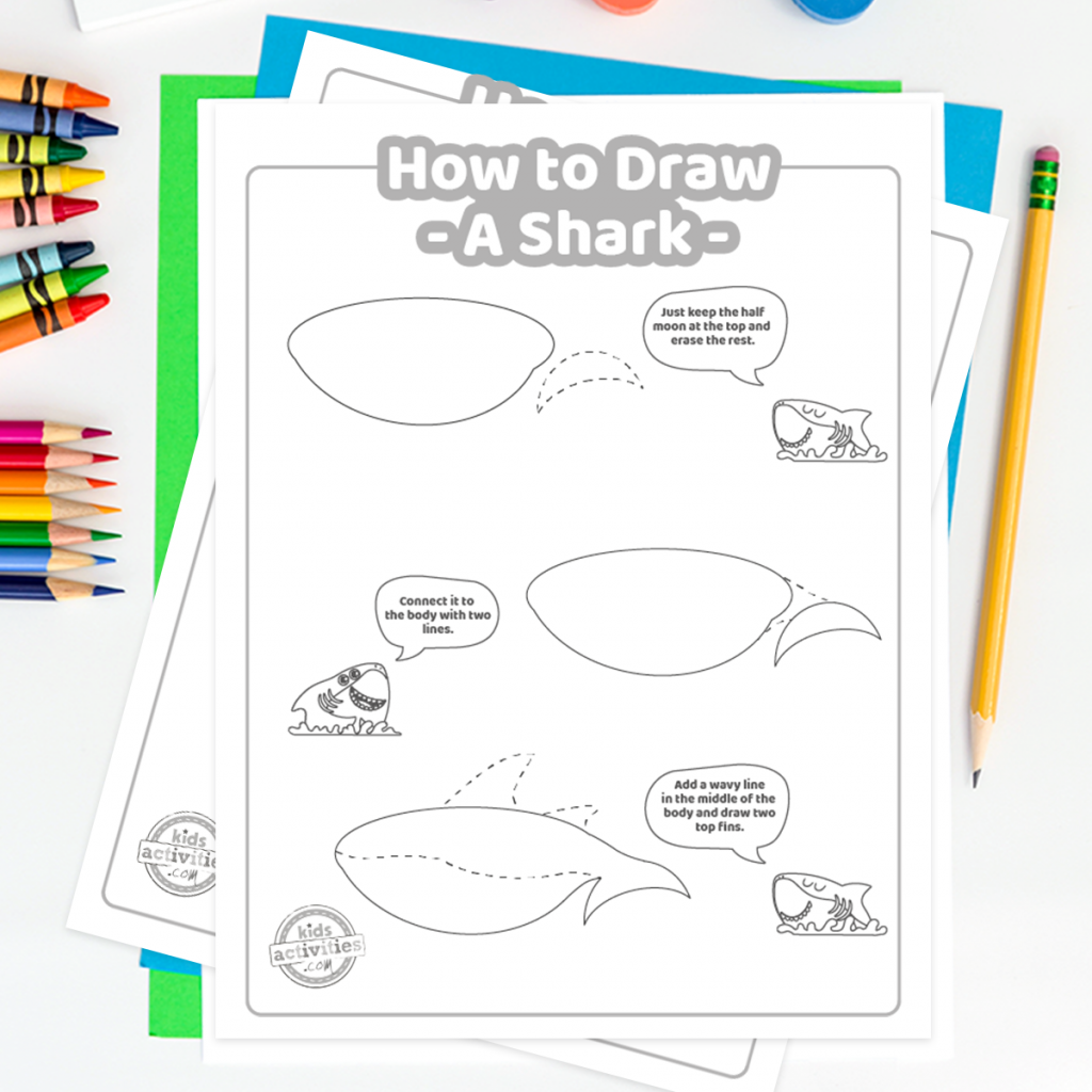 shark drawing steps on how to draw a shark for kids - easy ways to draw a shark