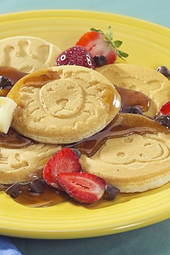 Zoo Friends Pancakes on Plate