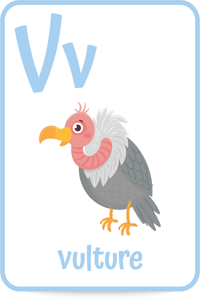 Words that start with the letter V like vulture