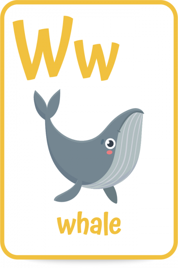 Words that start with the letter W like whale